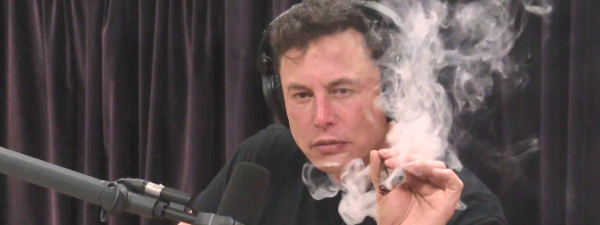 VIDEO. Joint, whisky et discussion sur la fin du monde : l'interview déjantée d'Elon Musk, le dirigeant de Tesla