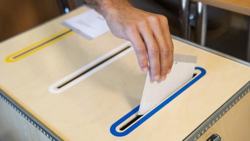 Elections en Suède : comment l'extrême droite s'est peu à peu imposée dans le paysage