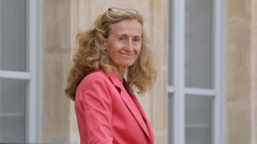 Pourquoi les propos de Nicole Belloubet sur la convocation de Benalla font tiquer sénateurs et magistrats