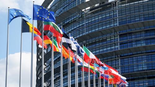 Élections européennes : LREM et RN au coude-à-coude, selon un sondage Odoxa pour franceinfo