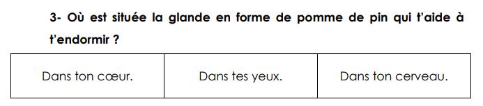 Un exercice de l\'évaluation de français proposée en septembre 2018 aux élèves de CE1, diffusé par le Snuipp-FSU.