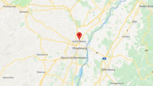 Bas-Rhin : un suspect interpellé et placé en garde à vue après la disparition d'une étudiante de 20 ans