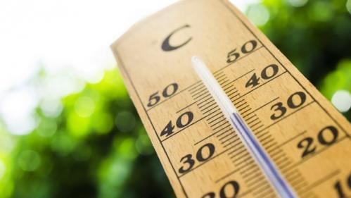 L'année2018 a été la plus chaude jamais enregistrée en France métropolitaine depuis le début des relevés, selon Météo France