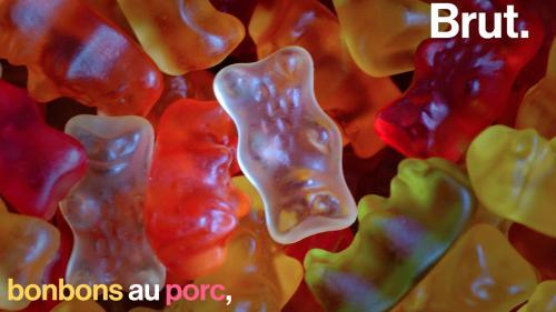 VIDEO. Yaourts au boeuf, sodas aux insectes… Connaissez-vous la composition de vos aliments ?