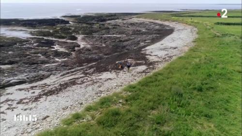 VIDEO. La pollution plastique menace aussi l'île déserte sur laquelle vit un couple de Robinson modernes en mer d'Iroise