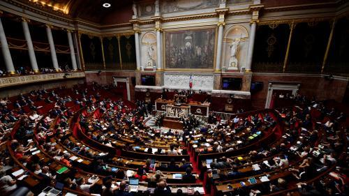 Des députés veulent supprimer des niches fiscales