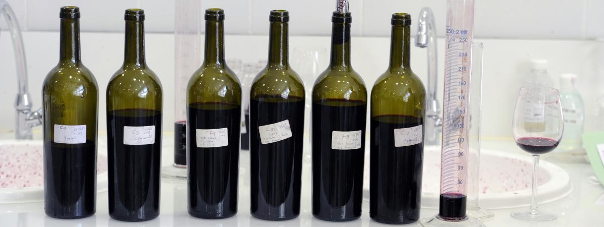 Franceinfo a fait analyser dix bouteilles de vin différentes, afin d\'en connaître la composition.