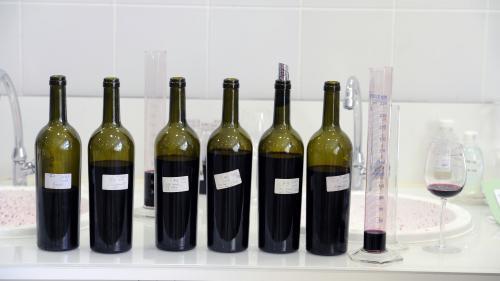 ENQUETE FRANCEINFO. Additifs, pesticides... Le vin que vous buvez ne contient pas que du raisin : découvrez le résultat de nos analyses