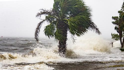 "DIRECT. Etats-Unis : l'ouragan Michael, ""potentiellement catastrophique"", affleure la Floride"