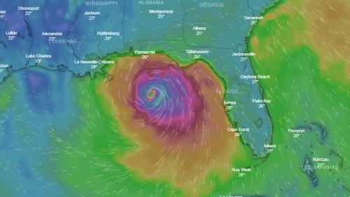 CARTE. Suivez en direct l'évolution de l'ouragan Michael, qui se dirige vers la Floride