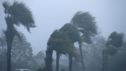 """Floride : l'ouragan Michael, """"monstrueux"""", fait au moins un mort et dévaste le nord-ouest de la côte"""
