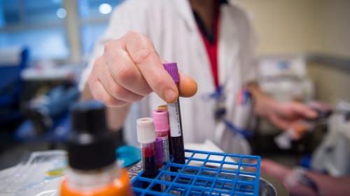 Don du sang : l'Assemblée maintient le statu quo pour les donneurs homosexuels