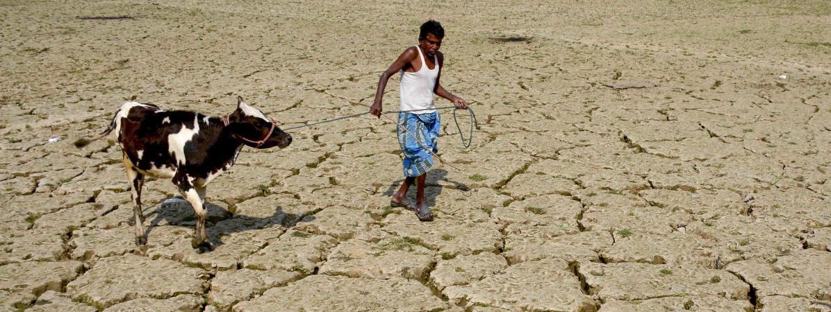 Le réchauffement climatique a multiplié par quatre les catastrophes depuis les années 1970, estiment des humanitaires