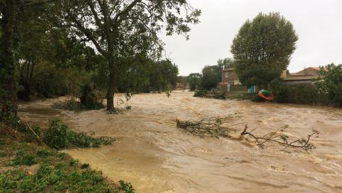 EN IMAGES. Dans l'Aude, des rues transformées en torrents par les intempéries