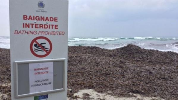 Saint-Tropez : marée noire sur la Côte d'Azur
