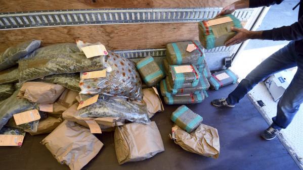 Cher: deux tonnes de cannabis saisies dans un véhicule de location, trois hommes et une femme arrêtés