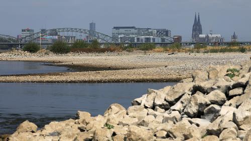Allemagne : faute de pluie, le Rhin a atteint son plus bas niveau historique à Cologne