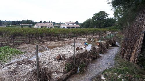 """""""La rivière a carrément changé de lit"""":dans l'Aude, des hectares de vignobles rendus méconnaissables par le déluge"""