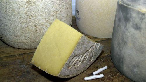 Cantal : à cause de la sécheresse, il y aura moins de fromage Salers cette année