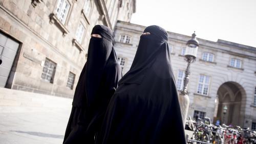 """Des experts de l'ONU """"condamnent"""" la France pour avoir verbalisé deux femmes qui portaient le niqab"""