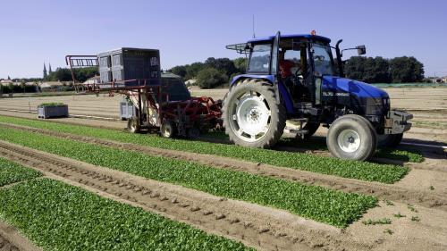 Métam-sodium : la préfecture de Loire-Atlantique annonce des contrôles renforcés sur le pesticide
