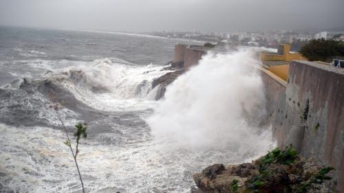 """Tempête en Corse : Bastia est """"une ville fantôme, vide de ses habitants"""", raconte le maire"""