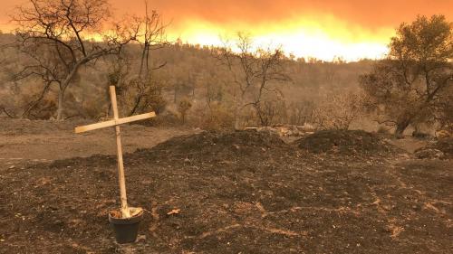 """Incendies : la Californie vit """"une situation catastrophique où tout est disproportionné"""" selon l'ONG Pompiers de l'urgence internationale"""
