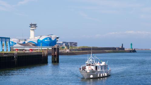 Douze migrants réussissent à rallier la Grande-Bretagne sur un bateau de pêche volé en France