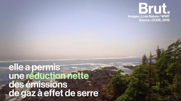 VIDEO. Rejetée aux États-Unis, adoptée dans les pays nordiques : tour du monde de la taxe carbone