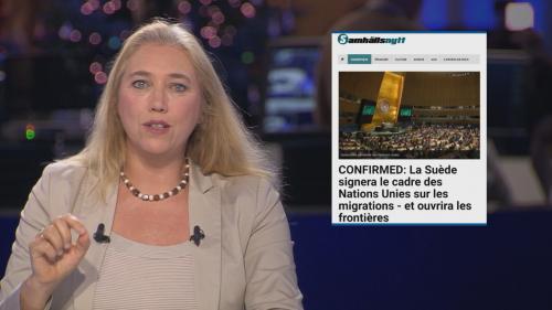 """Le Pacte de Marrakech veut-il vraiment """"faire de l'immigration illégale un droit de l'Homme"""" ?"""