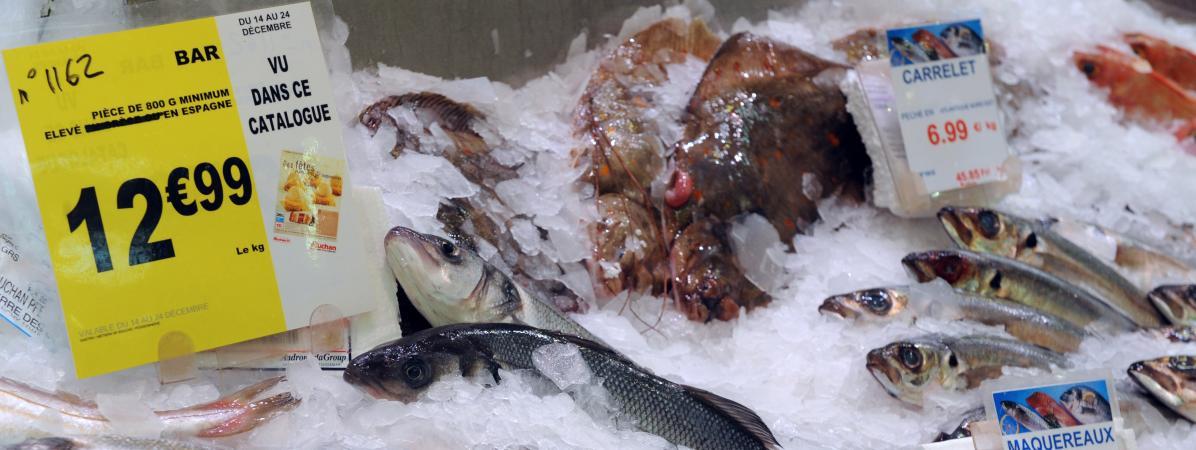 L\'écrasante majorité des poissons vendus en supermarché, comme le bar, est issue de pêche non durable.