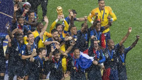 Légion d'honneur : Michel Houellebecq et les Bleus distingués dans la promotion du 1er janvier