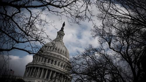 Etats-Unis : pourquoi le nouveau Congrès promet une fin de mandat compliquée pour Donald Trump