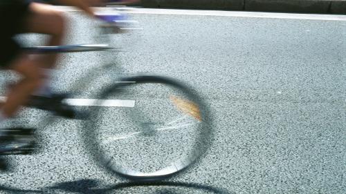 """Un """"gilet jaune"""" fait 600 km à vélo depuis la Haute-Savoie pour rencontrer Emmanuel Macron"""
