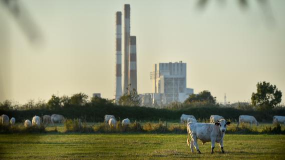La centrale à charbon de Cordemais, en Loire-Atlantique, le 28 septembre 2018.