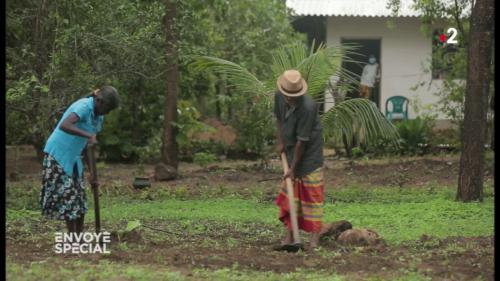 VIDEO. Avant d'être interdit au Sri Lanka, le glyphosate a ruiné la vie de cette famille