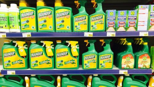 Glyphosate: la justice annule l'autorisation de mise sur le marché du Roundup Pro360