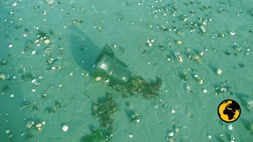 #AlertePollution : dans la baie du Mont-Saint-Michel, les plages envahies par le plastique issu des élevages d'huîtres et de moules