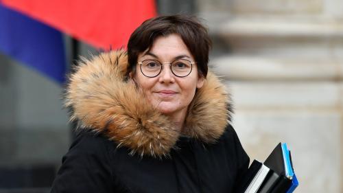 """VIDEO. """"Gilets jaunes"""" : la ministre des Outre-mer échange avec le militant controversé Etienne Chouard"""