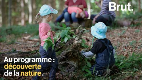 VIDEO. Au Danemark, les enfants étudient en pleine nature