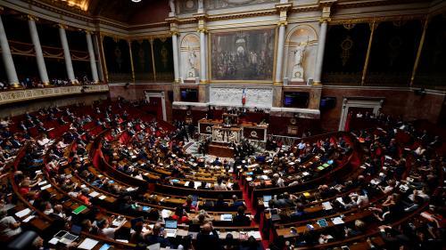 """""""Loi anti-casseurs"""", impôt sur la fortune, référendum le 26 mai... Trois sujets qui fâchent au sein de LREM"""