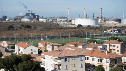 Bouches-du-Rhône : 80% des rats et souris soumis à des polluants atmosphériques présents à Fos-sur-Mer tombent malades
