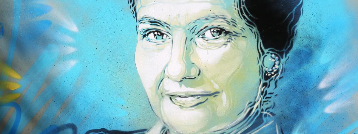 Paris : la mairie va porter plainte après le vandalisme de peintures de Simone Veil avec des croix gammées