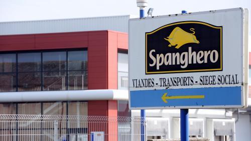 nouvel ordre mondial | Scandale de la viande de cheval: un an de prison ferme requis contre l'ex-directeur de l'entreprise Spanghero