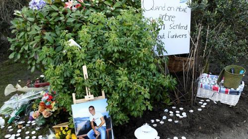 Essonne : deux arbres replantés en hommage à Ilan Halimi à Sainte-Geneviève-des-Bois