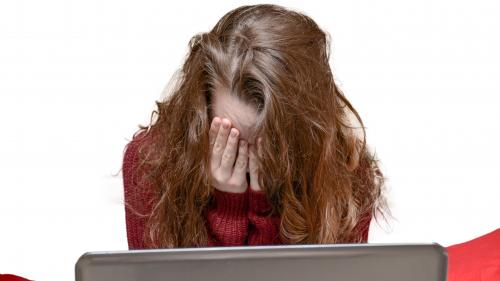 INFO FRANCEINFO. 22% des jeunes majeurs disent avoir été la cible de harcèlement en ligne, selon un sondage
