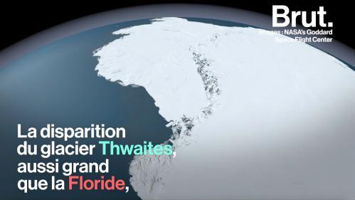 VIDEO. La fonte d'un glacier grand comme la Floride inquiète les scientifiques