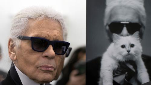 """VIDEO. """"Choupette est une fille riche"""" : quand Karl Lagerfeld révélait qu'il comptait léguer une partie de son héritage à sa chatte"""