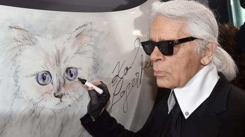 Karl Lagerfeld : mort d'une icône de la mode