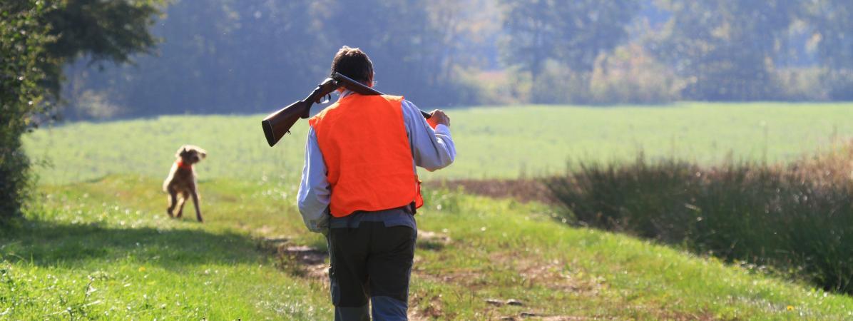 Gers : un chasseur vise un sanglier, il tire sur une voiture avec trois enfants à bord